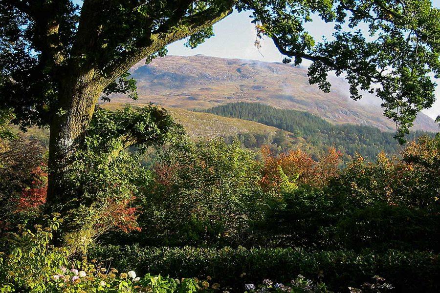Ard Daraich - Garden View